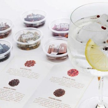 gin-tonic-pack-bragulat